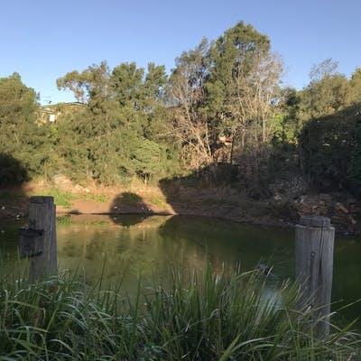 Dibble Avenue Waterhole