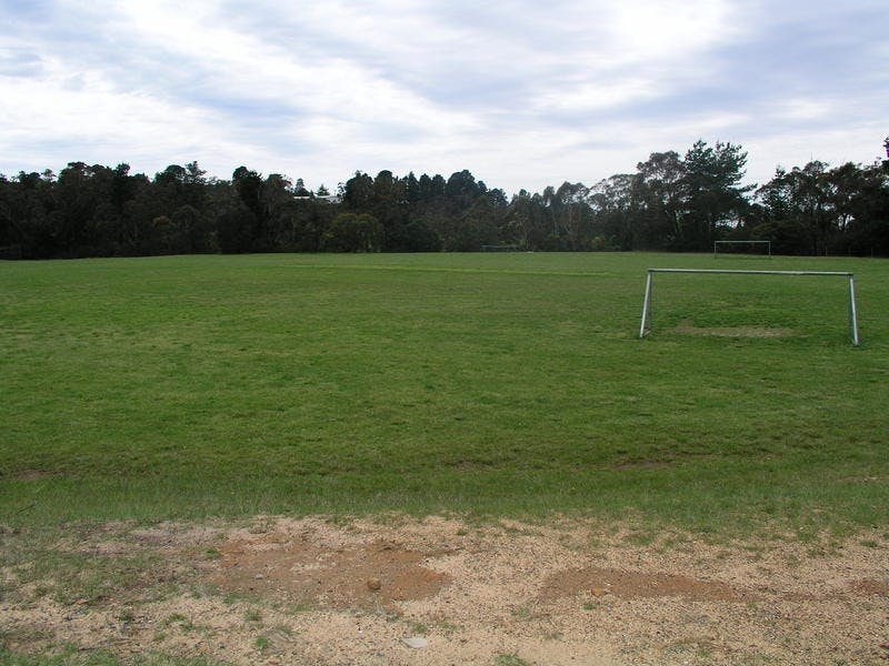 Pitt Park WWFalls. One sporting field also a dog off-leash