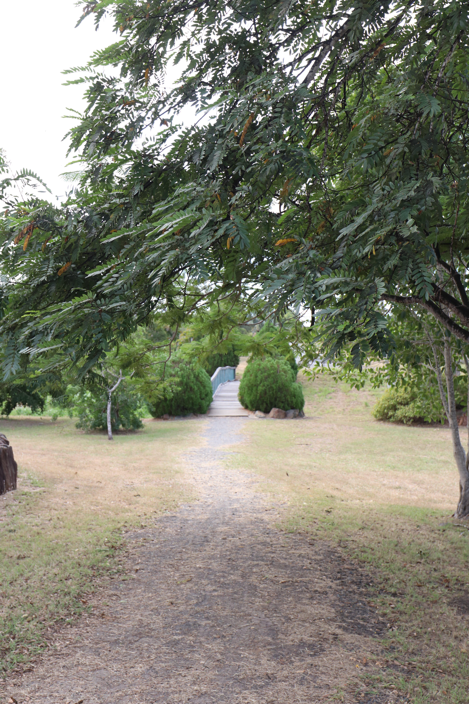 sarahs garden bridge.JPG