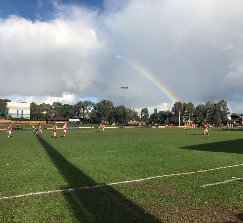 Iv Match Rainbows
