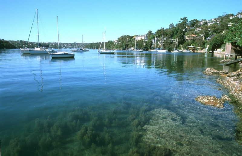 Aaa Sugarloaf Point Castlecrag Under Water