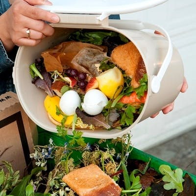The next step: food scraps to green waste