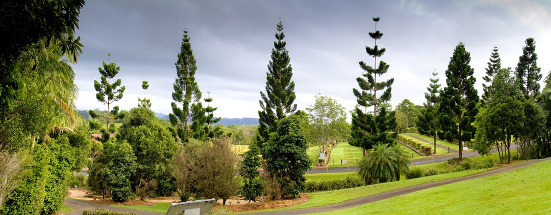 Panorama of the gardens at the Council owned cemetery at Environ