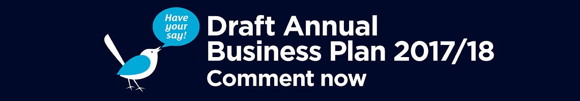 Your chance to have a say on our Business Plan and Budget for 2017/18
