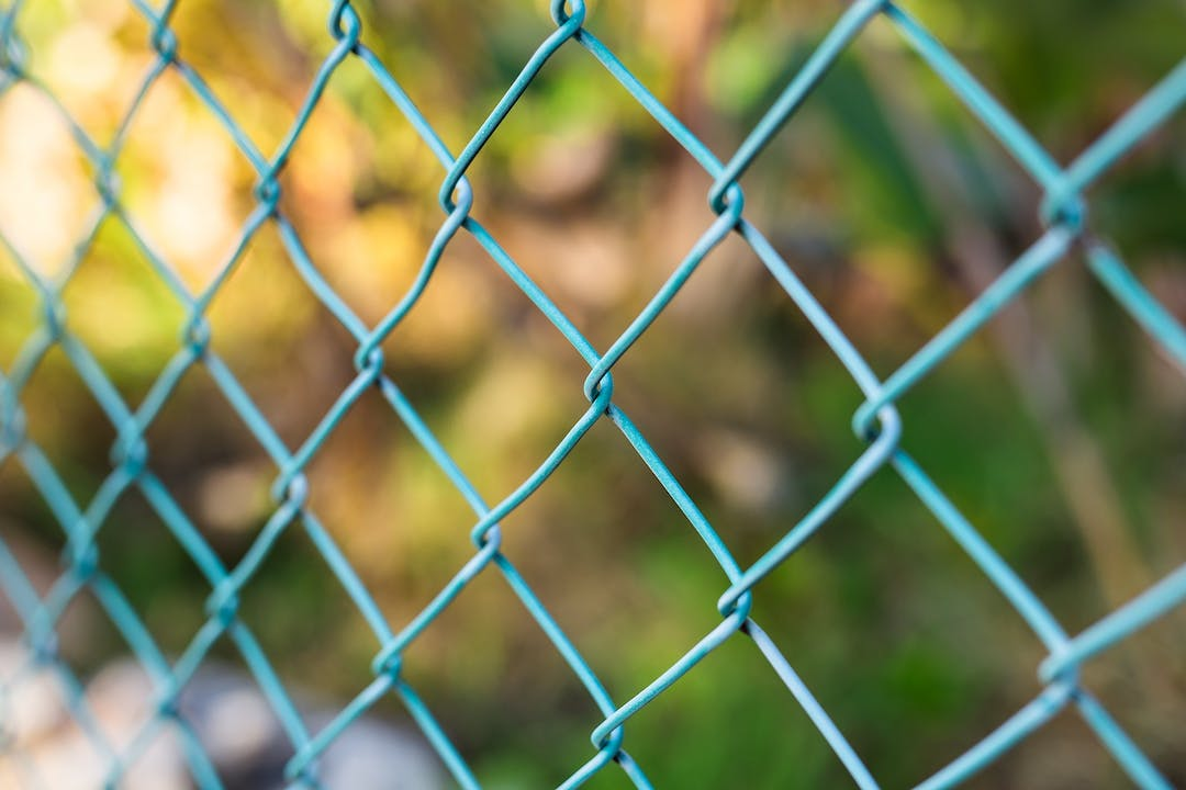 Wire fence with green grass on background pptwdqj