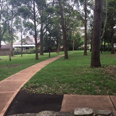 Central pathway through Lowanna Park with entry path to playground to the right