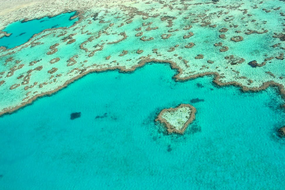 Heart Reef, Whitsundays