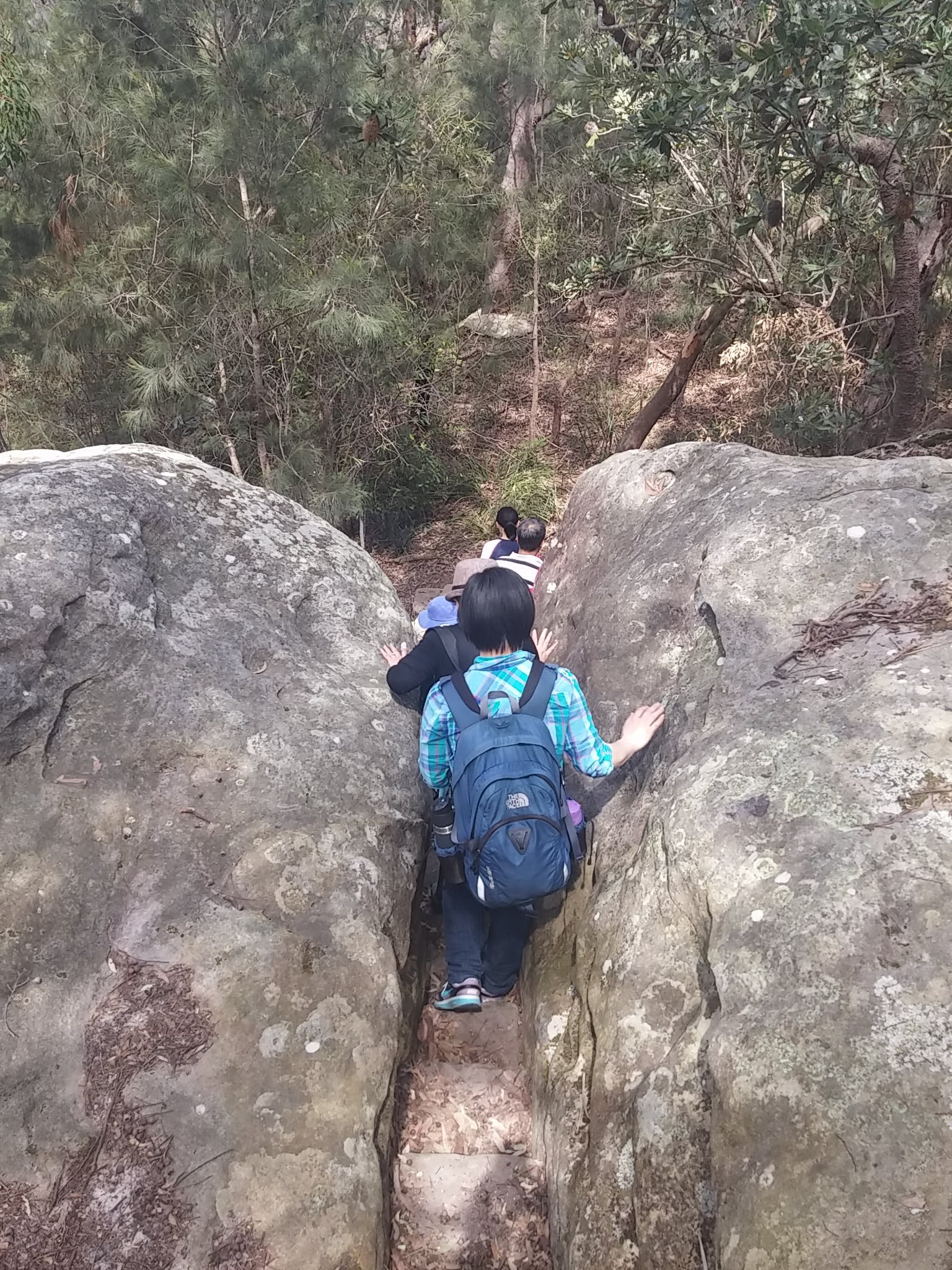 Guided School Holiday Bushwalk   Harold Reid Reserve   6 Oct 2016  (1)