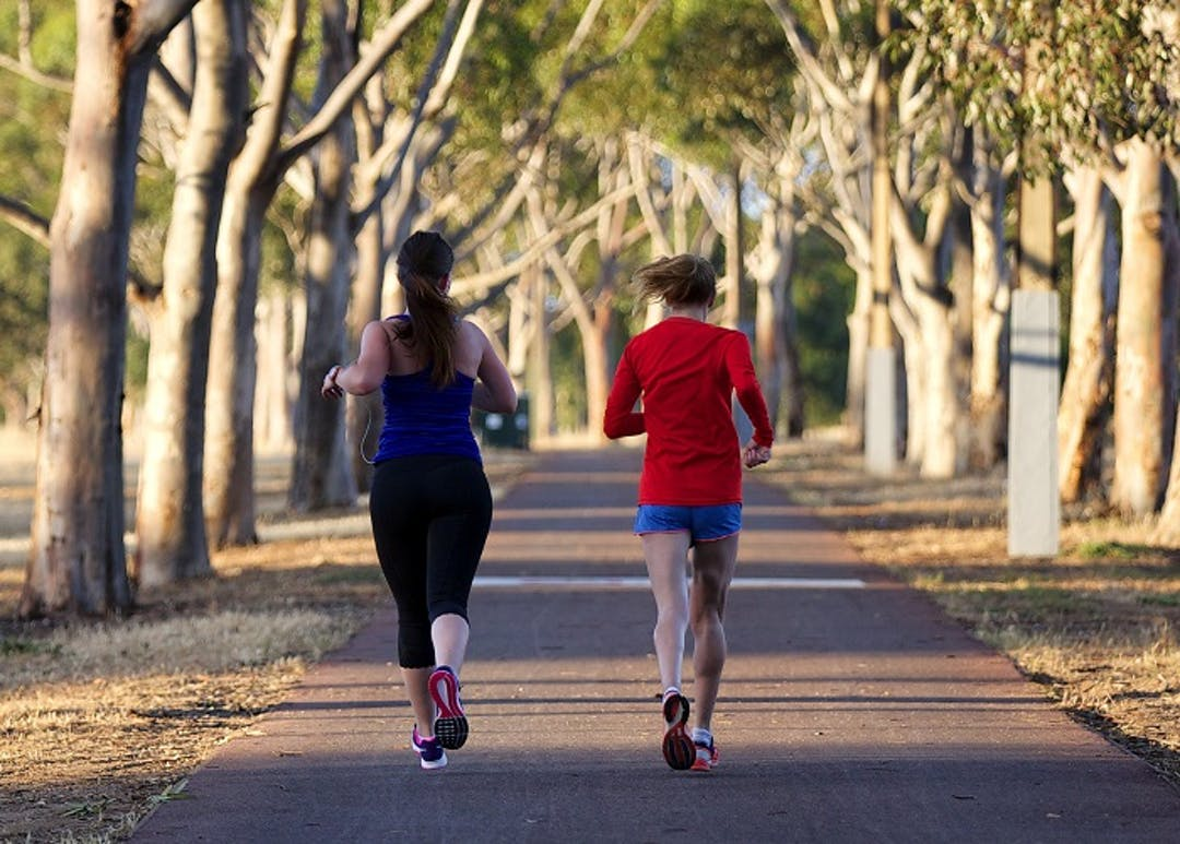 View from behind of two people jogging on a path in the Adelaide Park Lands
