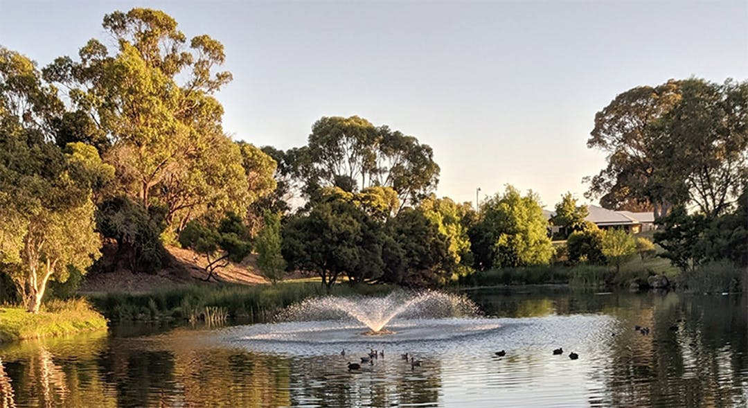 The park is located  between Tyneside Loop and Pebble Beach Boulevard in Meadow Springs and features a freshwater lake which is home to waterbirds. The design intent is to maintain the overall character of the park as a relaxing place to walk around and enjoy nature.