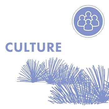 350x350px-Culture