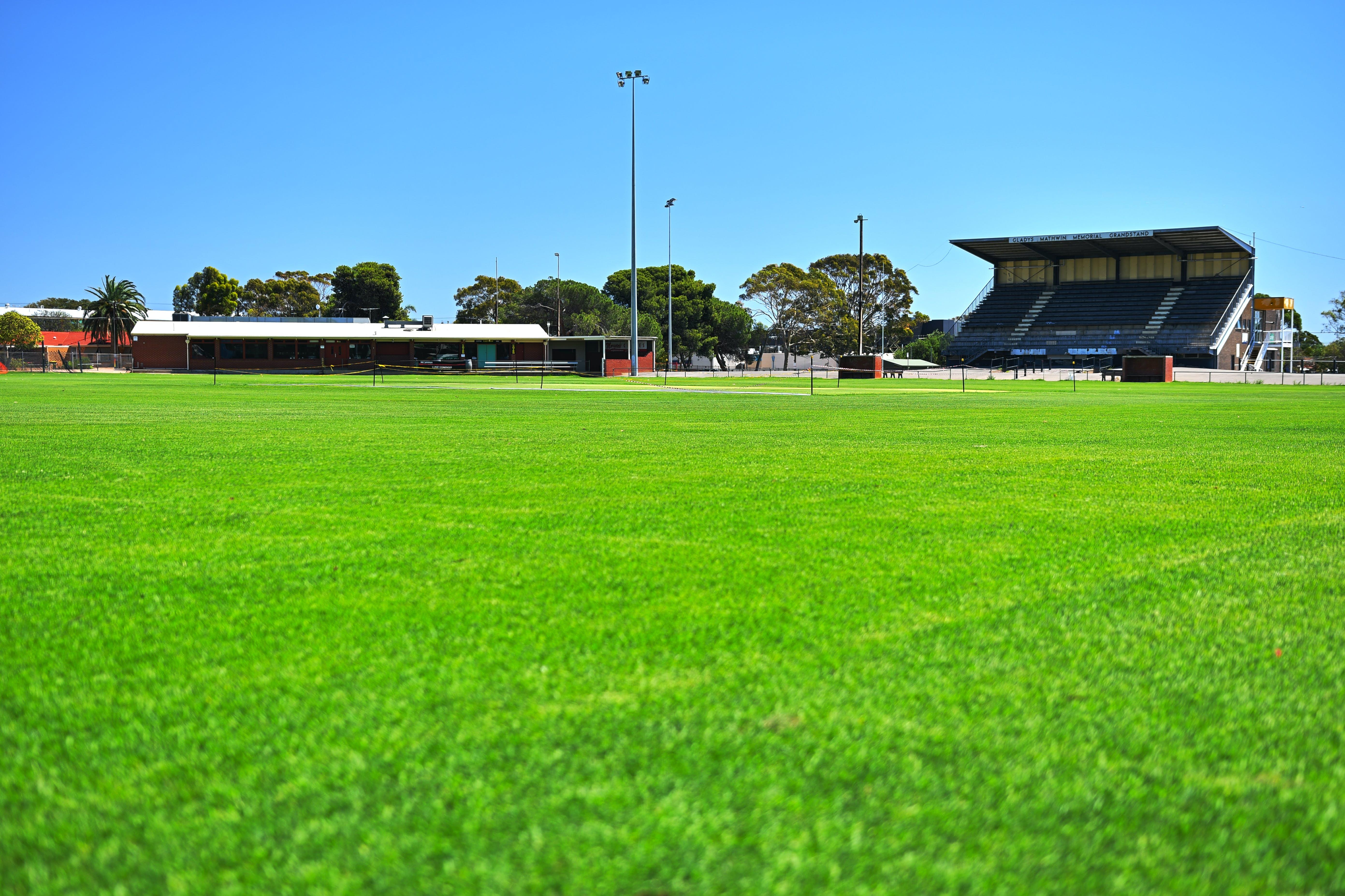 Brighton Oval