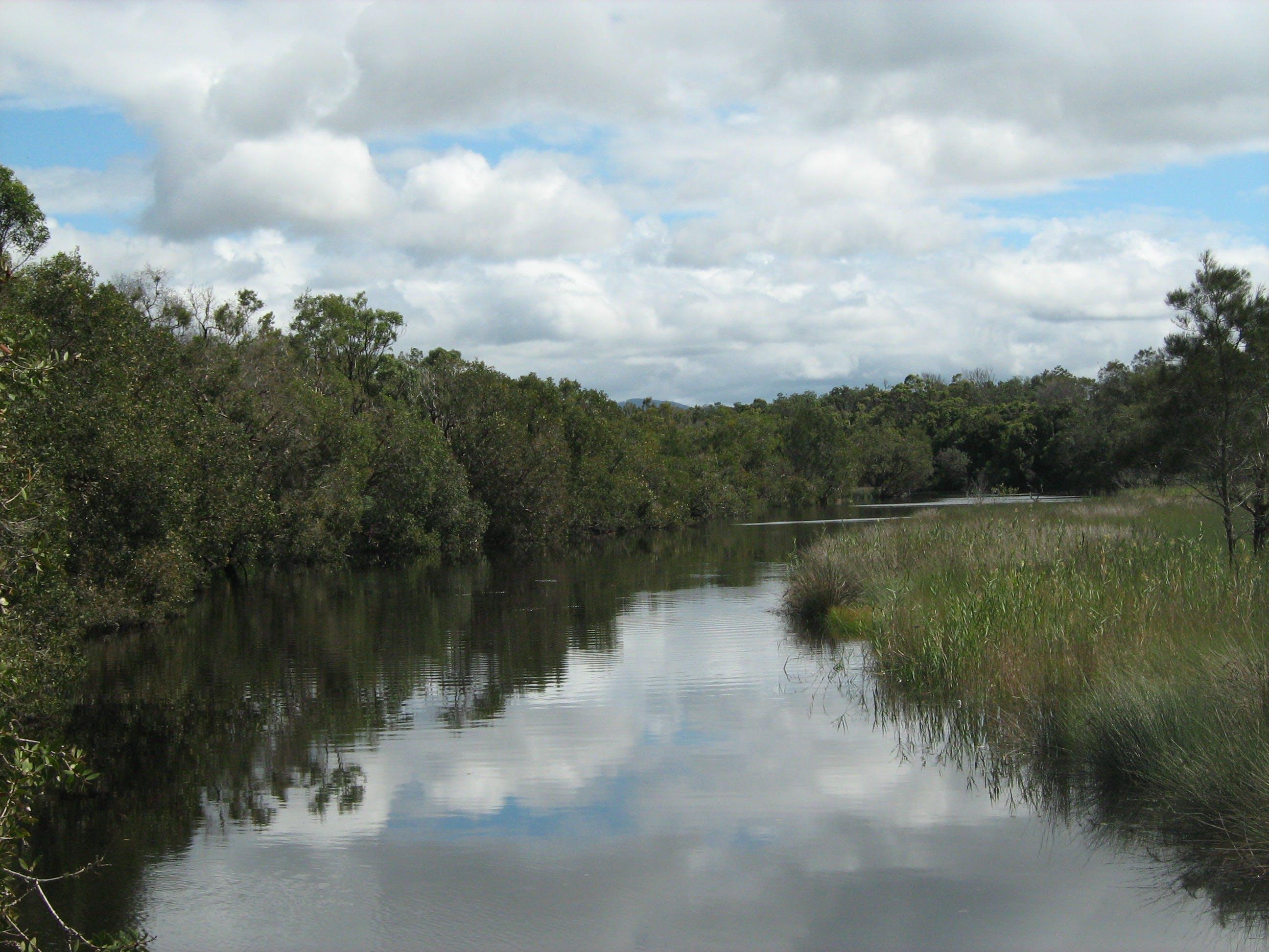 Creek A.JPG