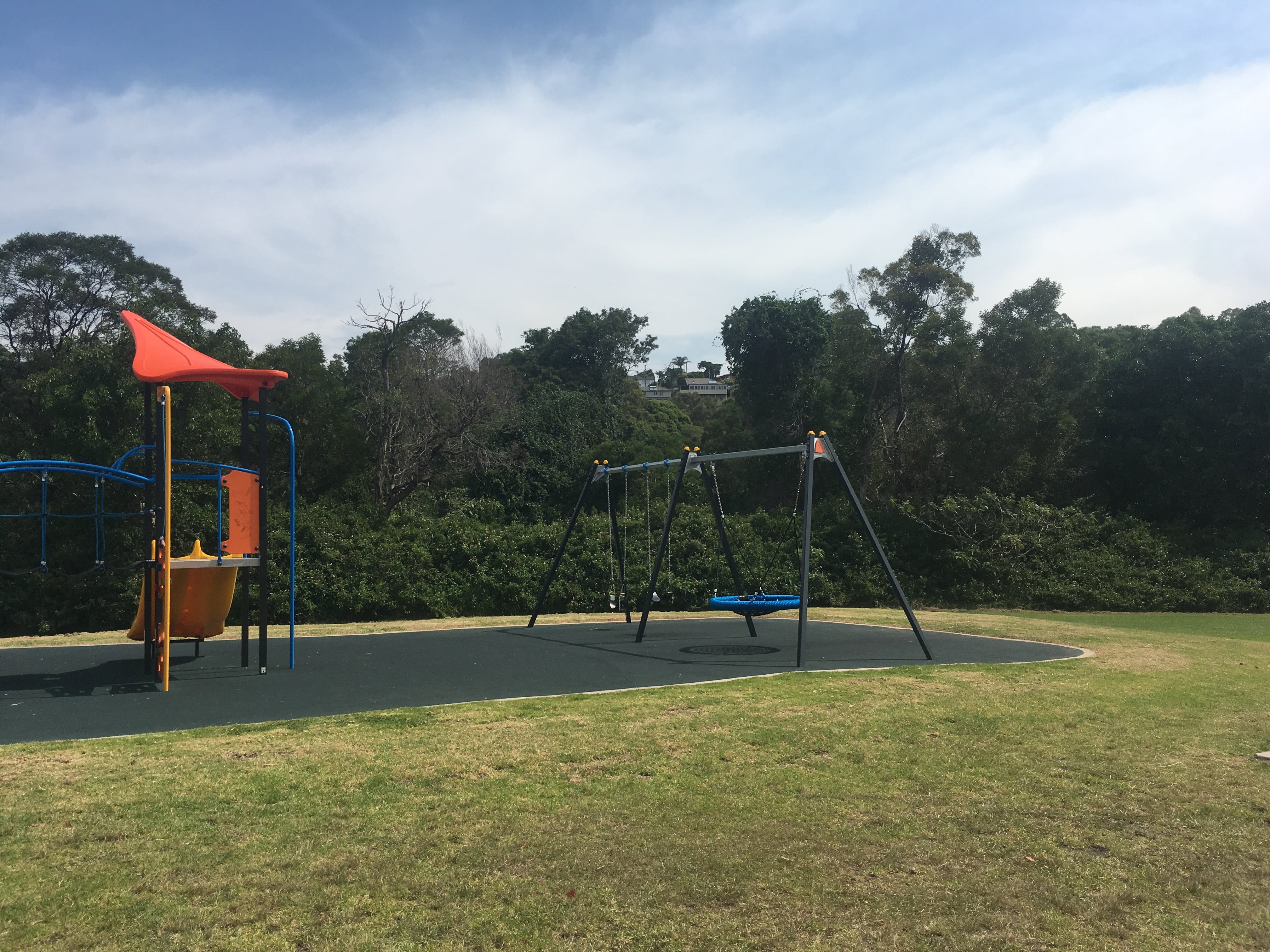 Existing play equipment in reserve