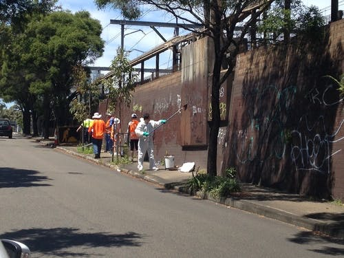 Graffiti management at Petersham Station