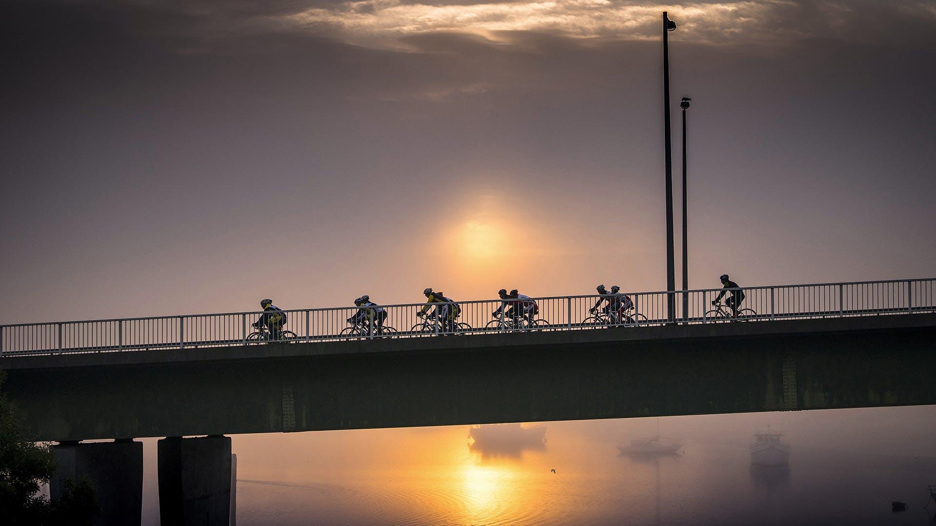 West Tamar Bridge.jpg