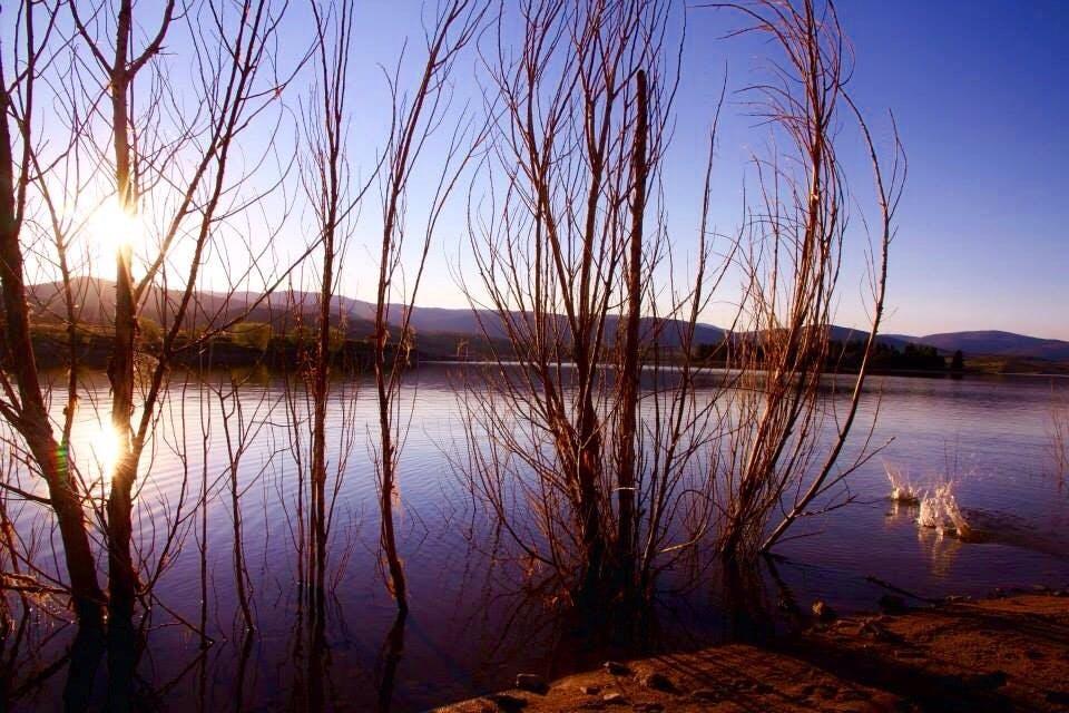 Angelique Gaynor   Landscape   Reflections