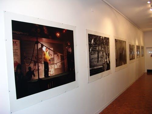 Chrissie Cotter Gallery Camperdown