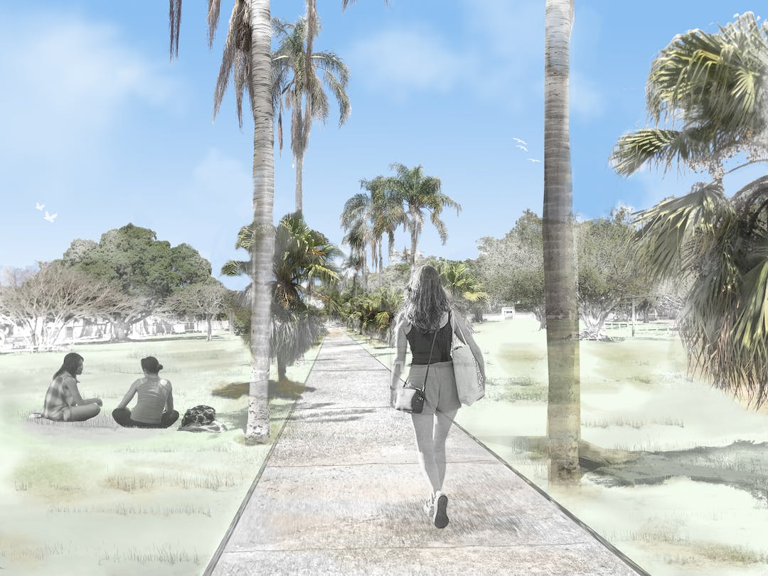 concept image for new ascot park girl walking through park on path with palm trees and grass