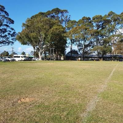 Allambie Heights Oval vista
