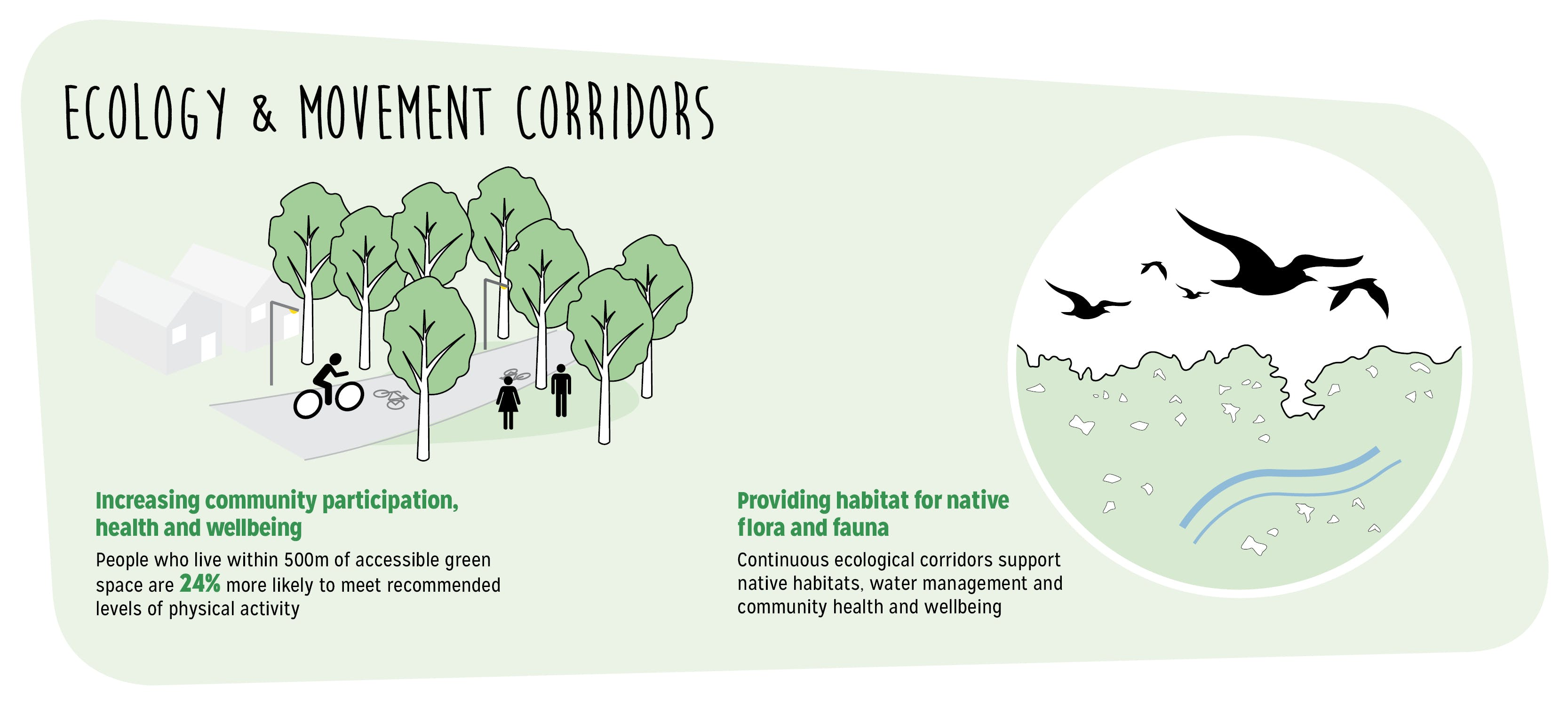 Ecology and movement corridors