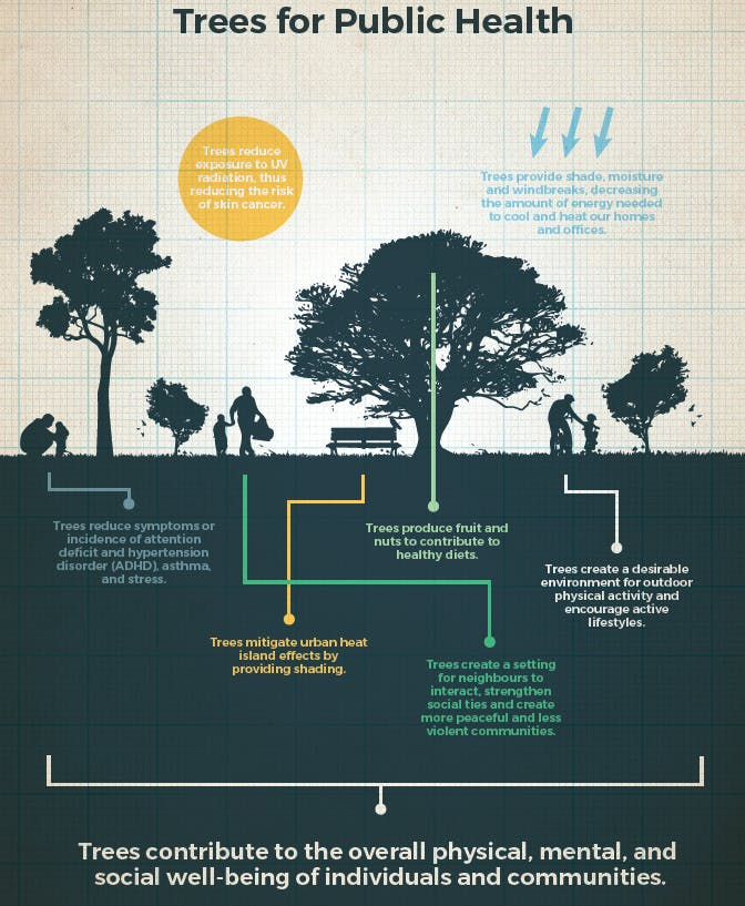 Trees For Public Health