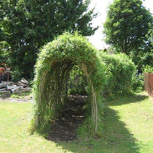 Nature Play Tunnel 300