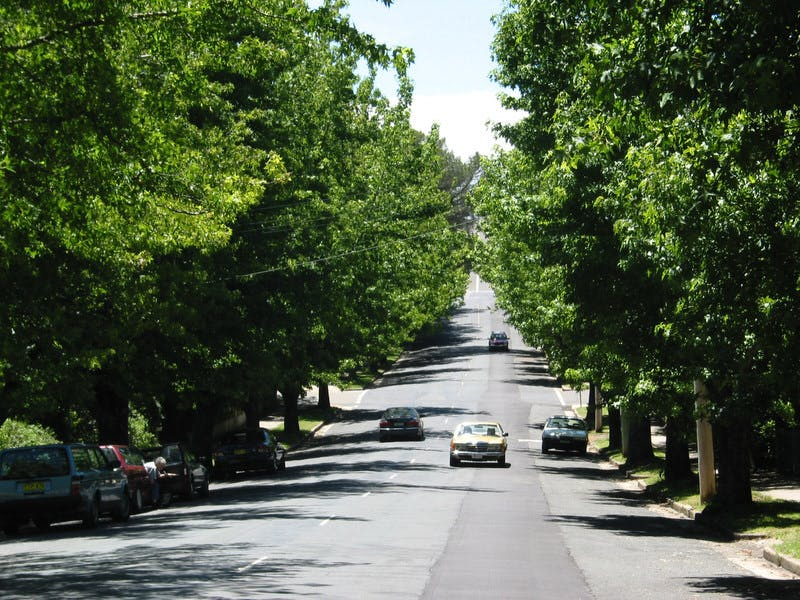 Wentworth Avenue, Blackheath