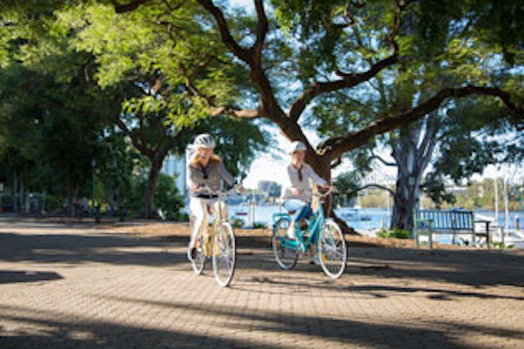 Cycling on Bunya Walk, Brisbane Botanic Gardens