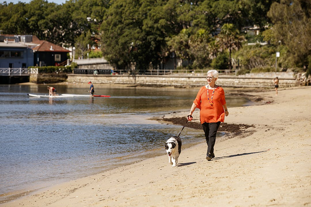 Rose bay park dog senior walking 2019 james horan