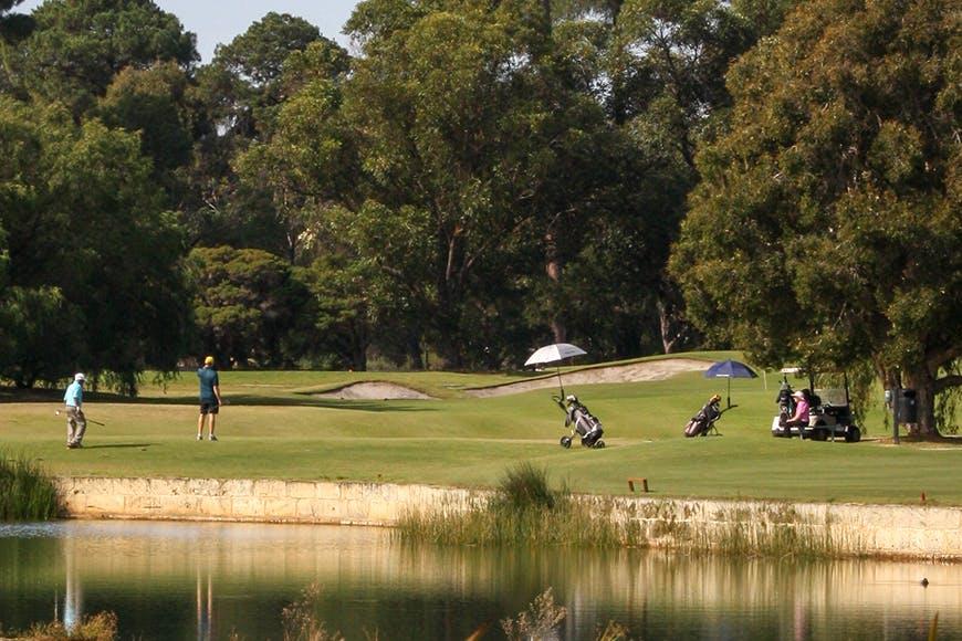 Collier Park Golf Web1