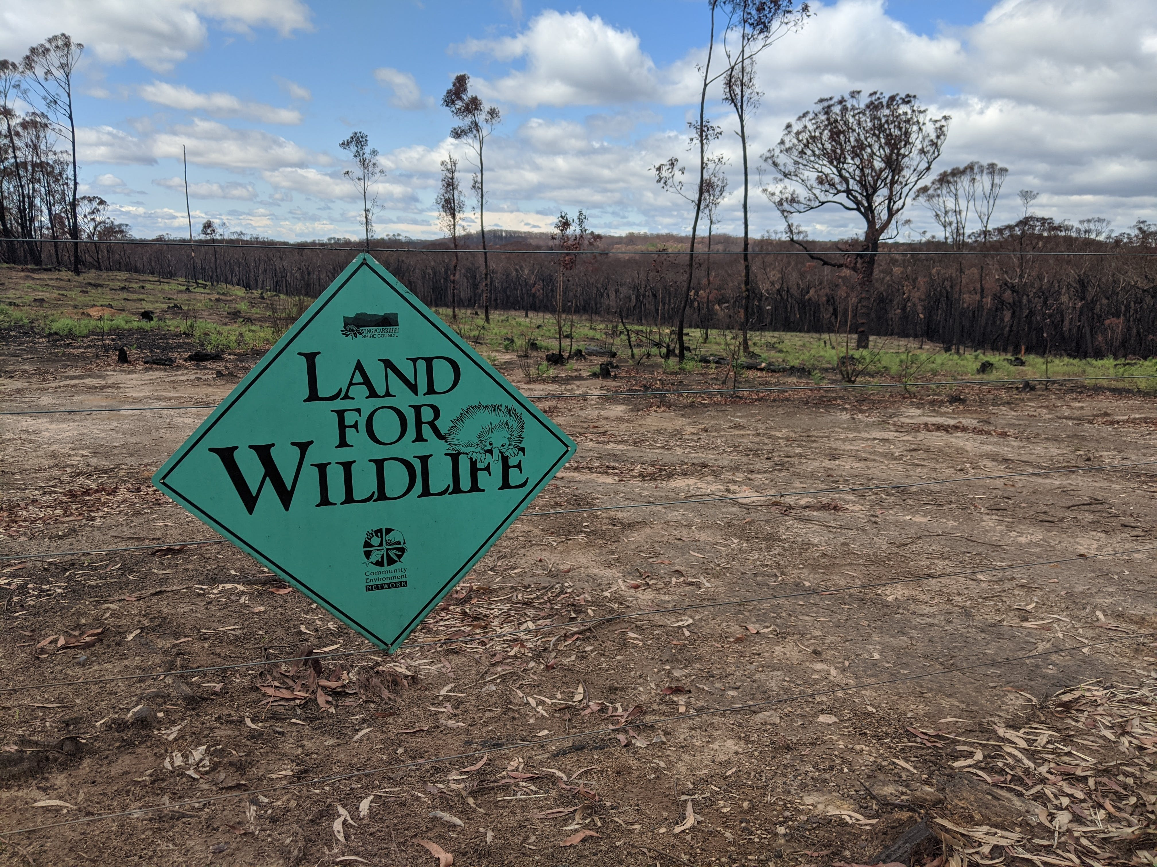 Land for Wildlife is here to help you recover