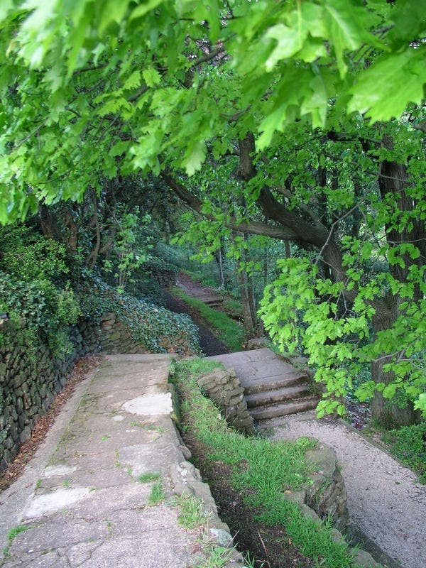 Kingsford Smith: Path