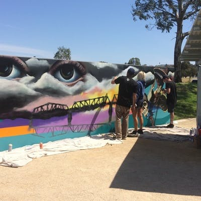 Community Saffety Plan image Skate Park Art Wall 2018