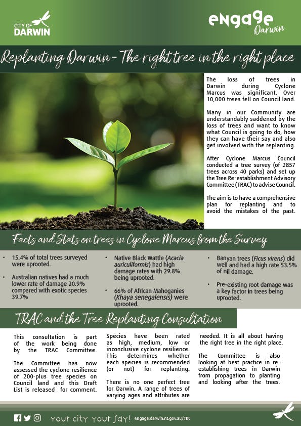 Tree Replanting Consultation Fact Sheet Revised3