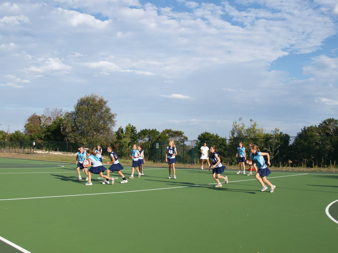 Mosman Drill Hall Common - Netball Court Lighting Concept - Preliminary Community Consultation