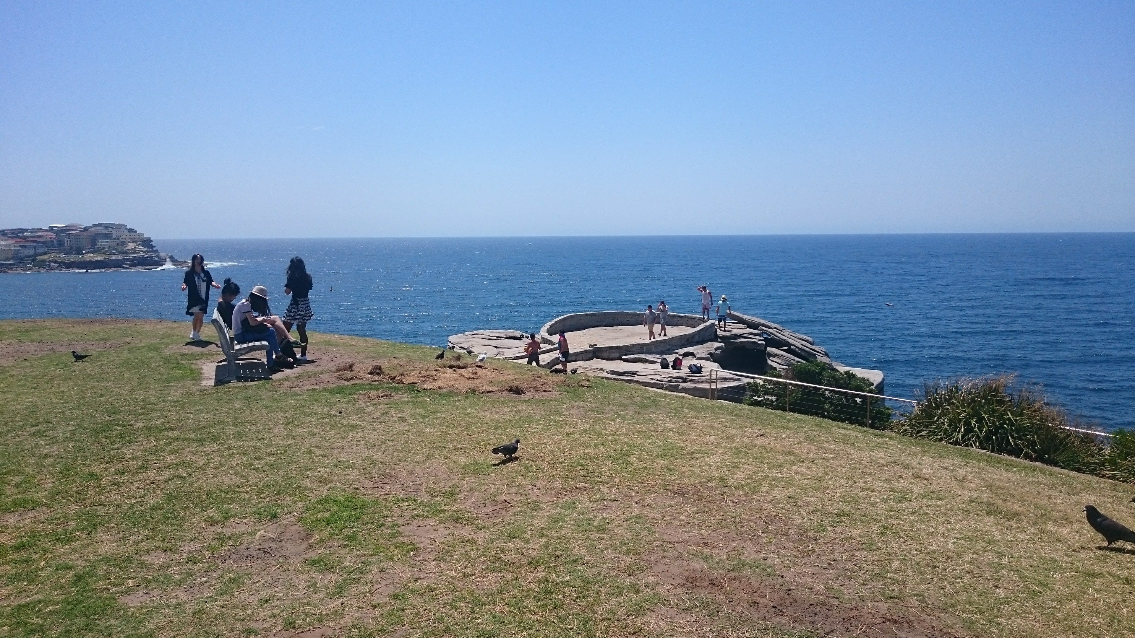 View of Mackenzies Point from Marks Park