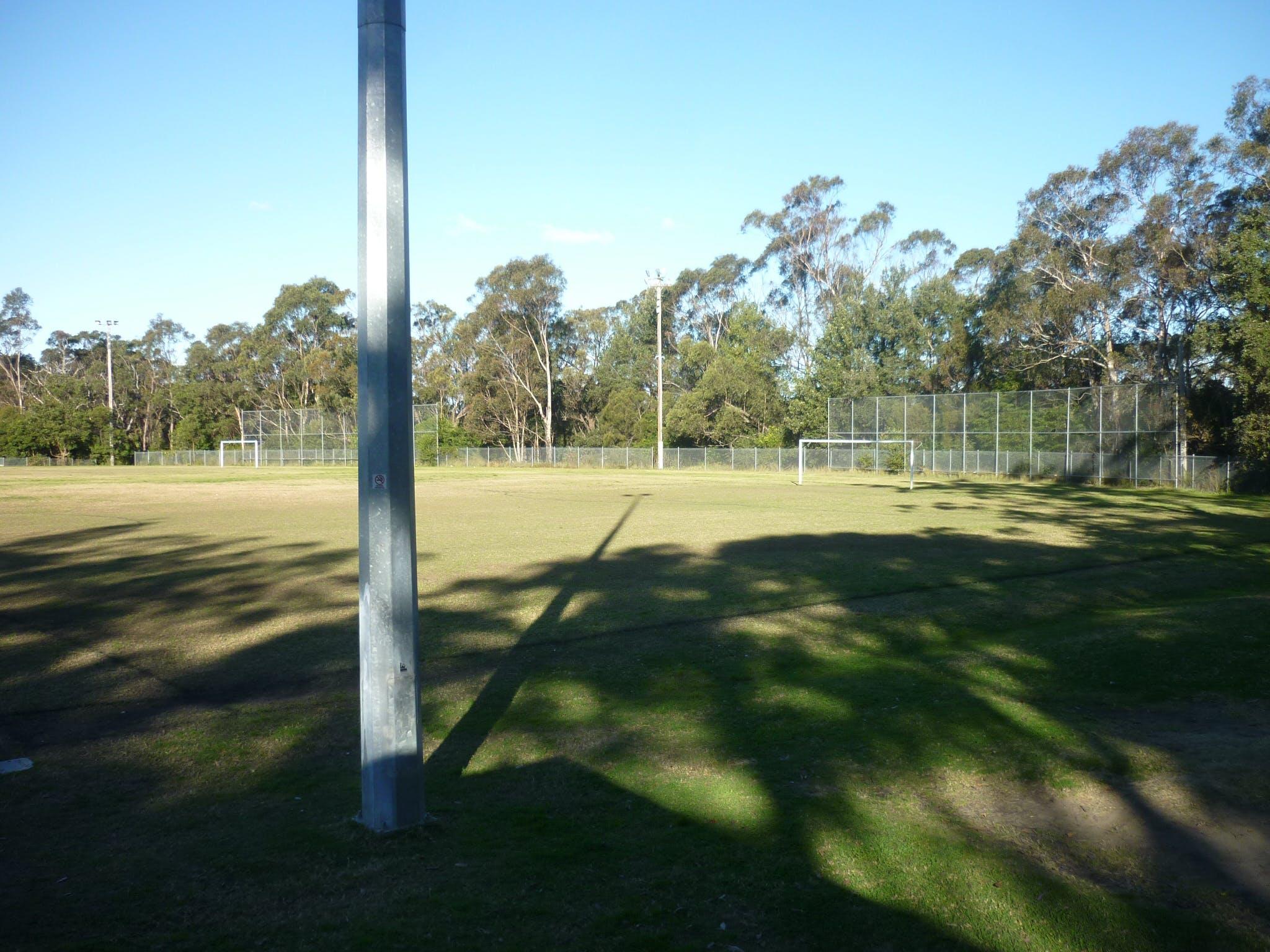 Blaxland St Johns Oval.JPG