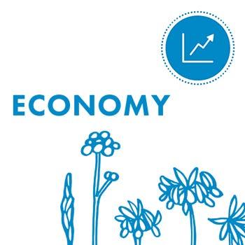 350x350px-Economy