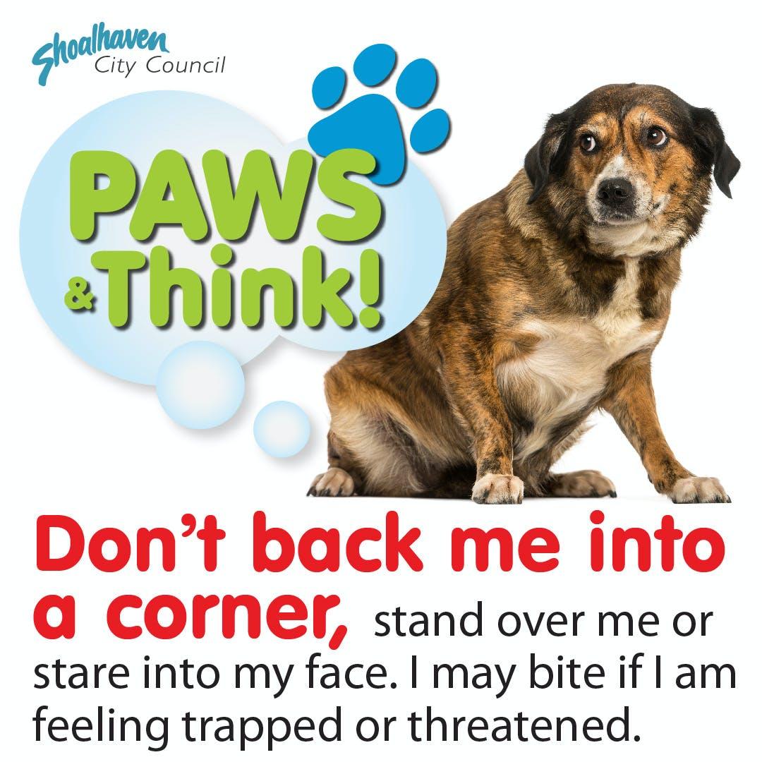 Fb Square Dog Ownership2 04