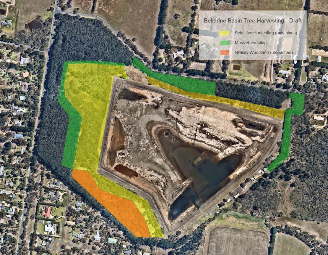 Bellarine Basin Tree Harvesting Map - Draft- updated Mar 2021.png