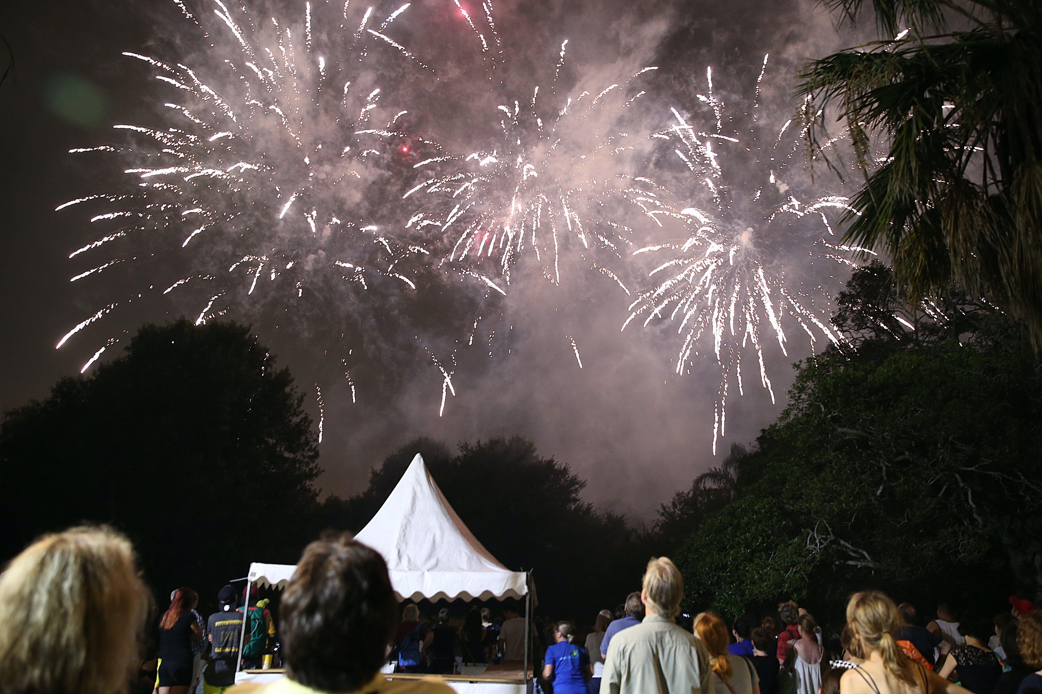 Enmore Park people watching fireworks