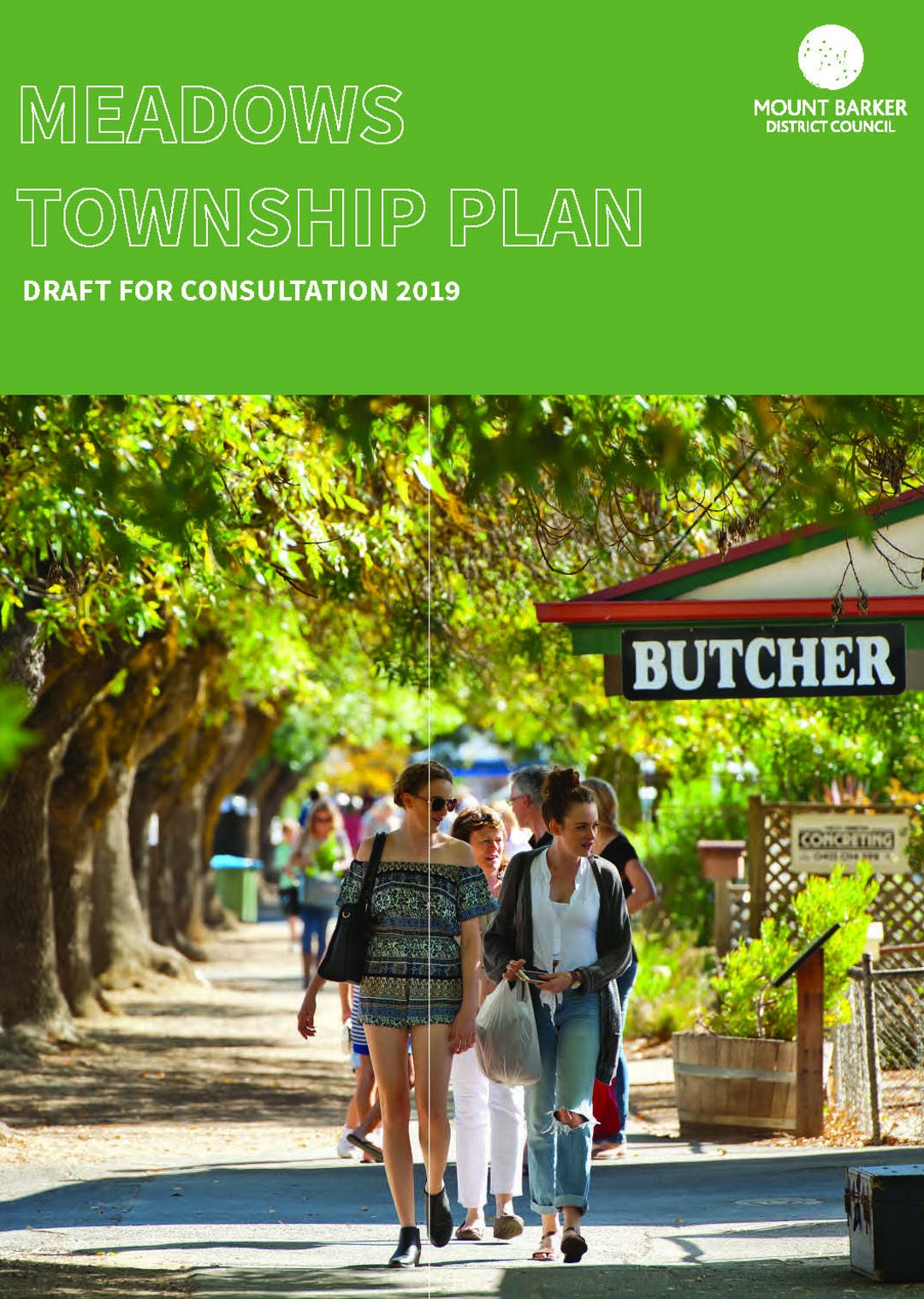 Draft Meadows Township Plan Front Cover