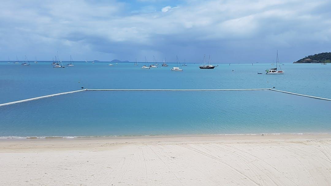 Boathaven Beach marine stinger net