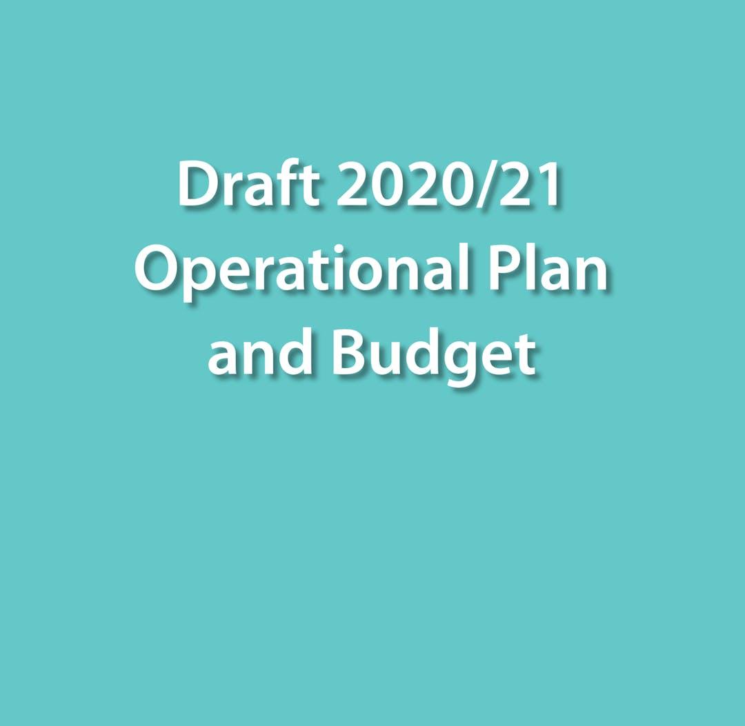 Draft 2020/21 Operational Plan & Budget