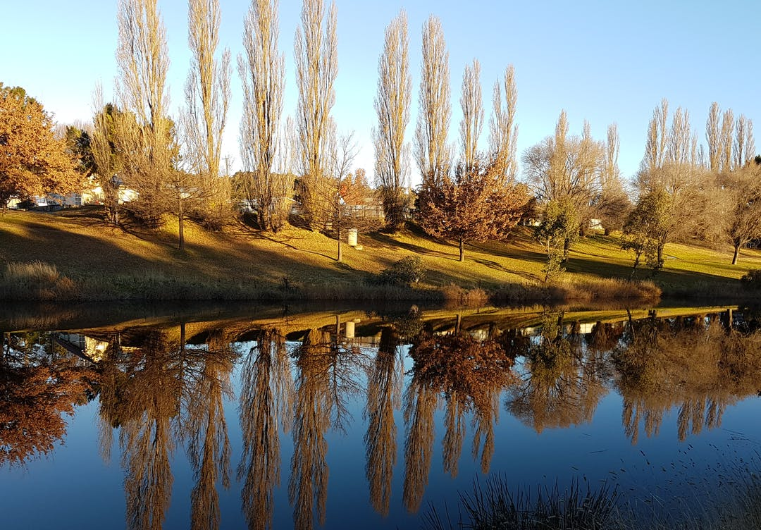 The Bombala River is one of a number of beautifal spots in town.