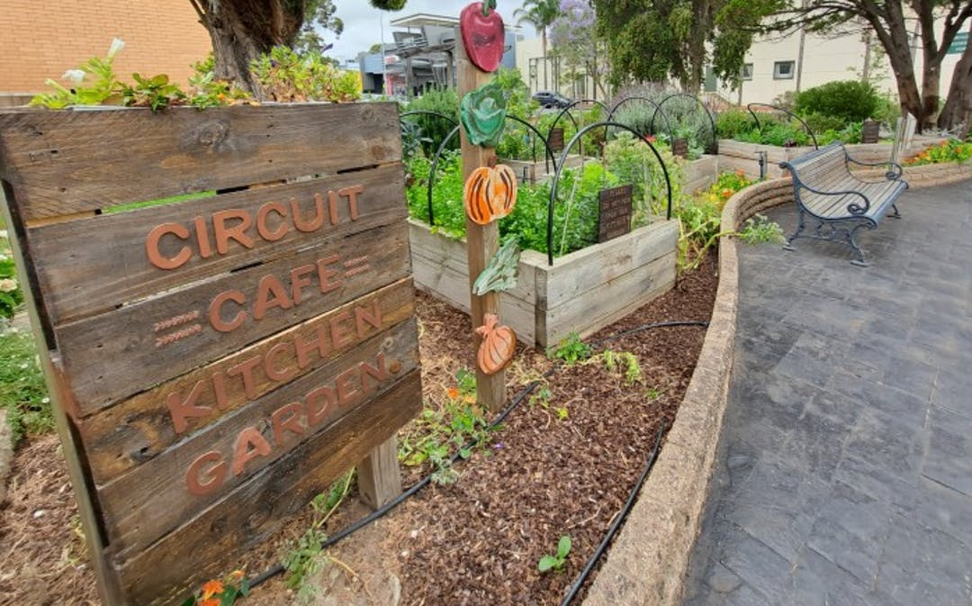 The Unley Community Centre Kitchen Garden provides fresh, seasonal ingredients for the Circuit Cafe meal service.