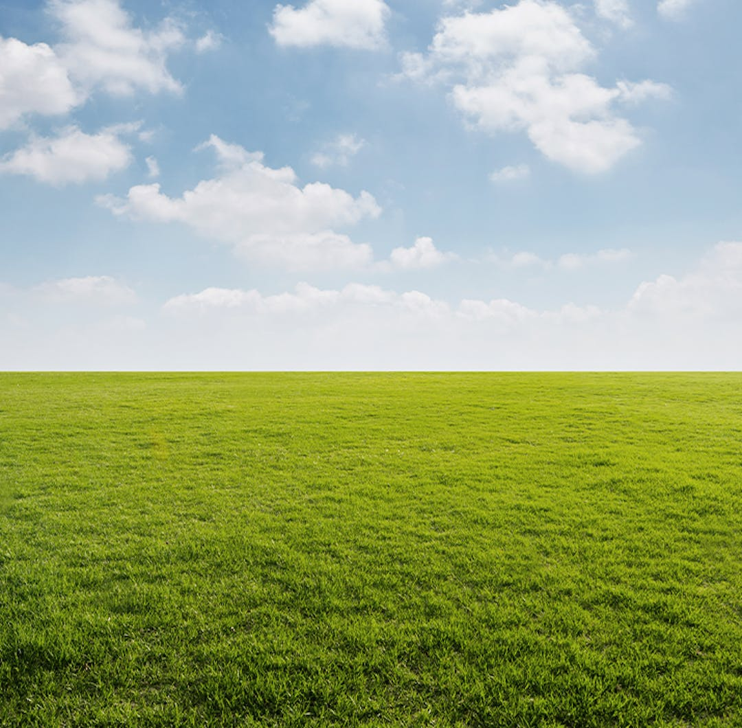 Grass and sky with cloudes
