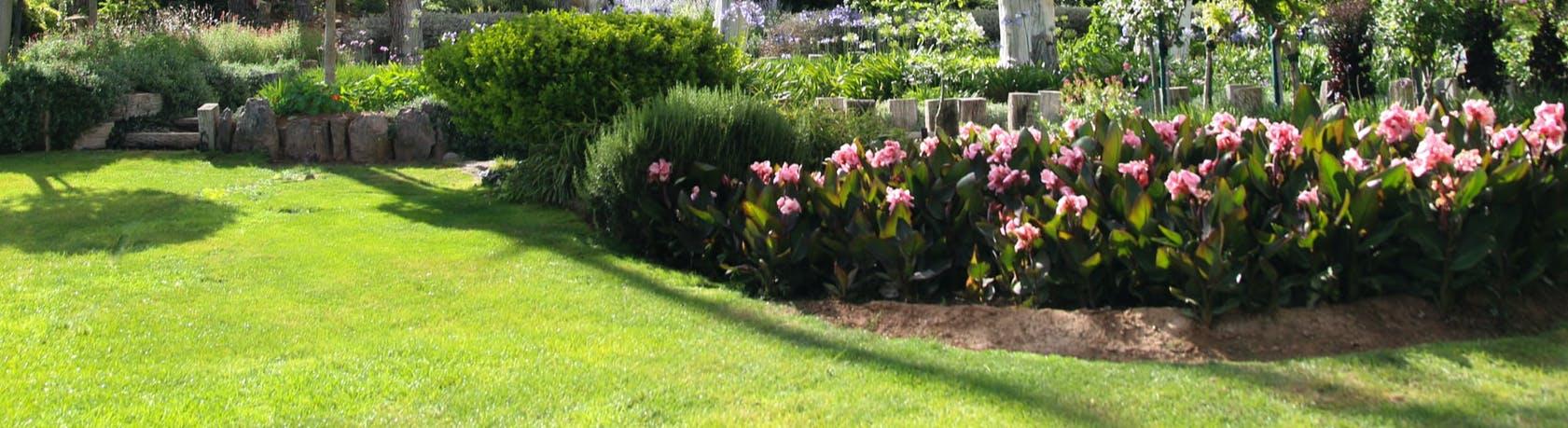 Photo of garden bed