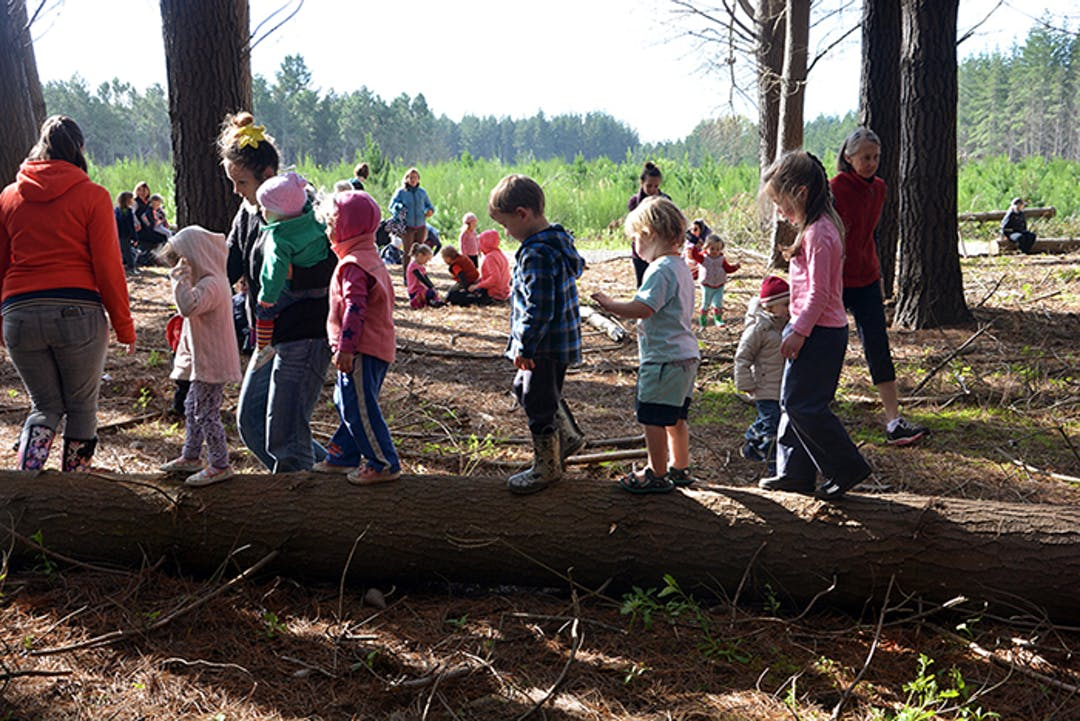 Children involved in nature play